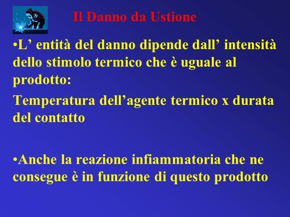 L entità del danno dipende dall intensità dello stimolo termico che è uguale al prodotto: Temperatura dellagente termico x durata del contatto Anche l