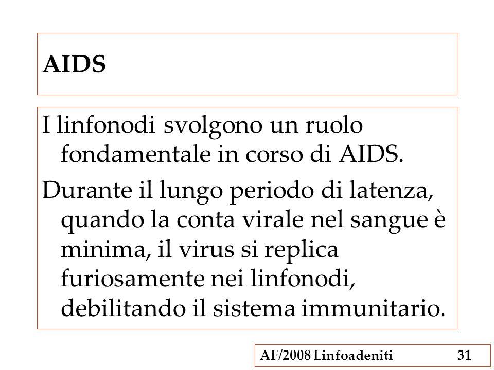 AF/2008 Linfoadeniti31 AIDS I linfonodi svolgono un ruolo fondamentale in corso di AIDS. Durante il lungo periodo di latenza, quando la conta virale n