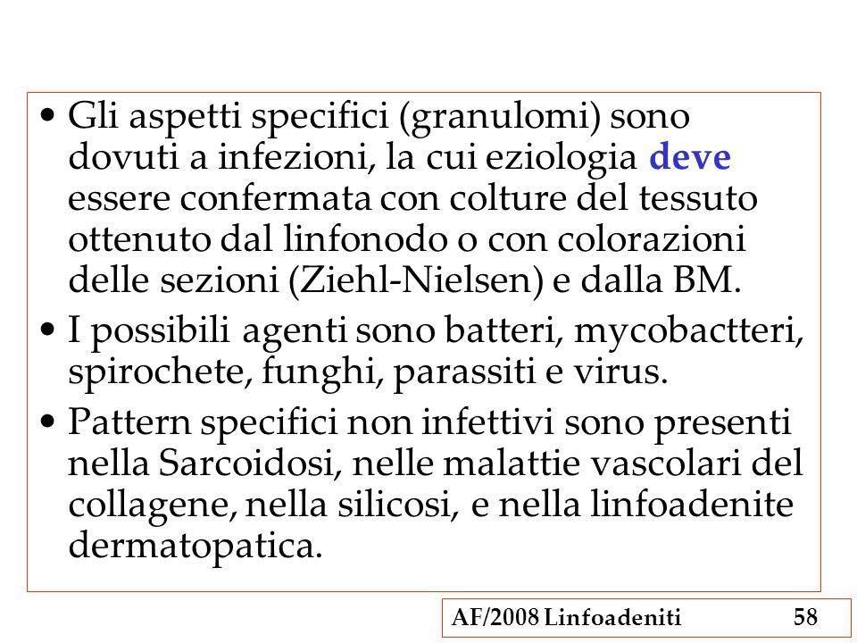 AF/2008 Linfoadeniti58 Gli aspetti specifici (granulomi) sono dovuti a infezioni, la cui eziologia deve essere confermata con colture del tessuto otte