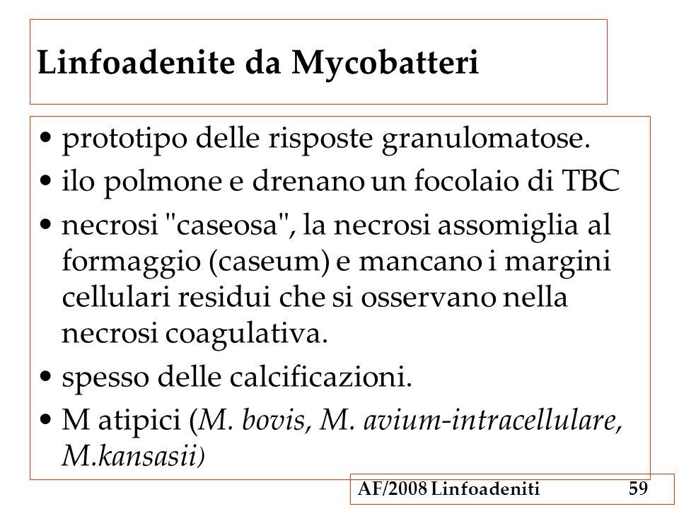 AF/2008 Linfoadeniti59 Linfoadenite da Mycobatteri prototipo delle risposte granulomatose. ilo polmone e drenano un focolaio di TBC necrosi