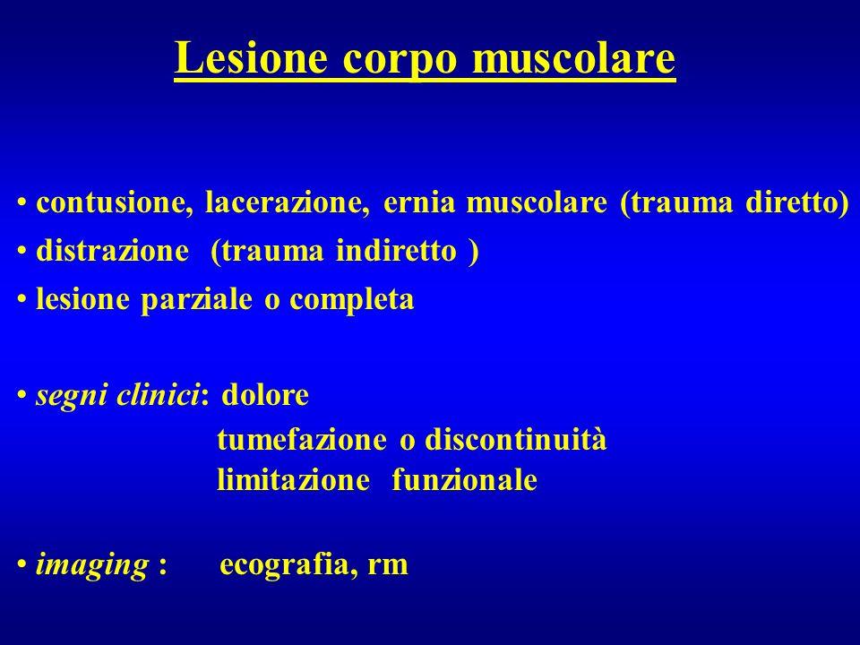Lesione corpo muscolare contusione, lacerazione, ernia muscolare (trauma diretto) distrazione (trauma indiretto ) lesione parziale o completa segni cl