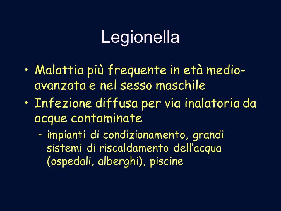 Legionella Malattia più frequente in età medio- avanzata e nel sesso maschile Infezione diffusa per via inalatoria da acque contaminate –impianti di c