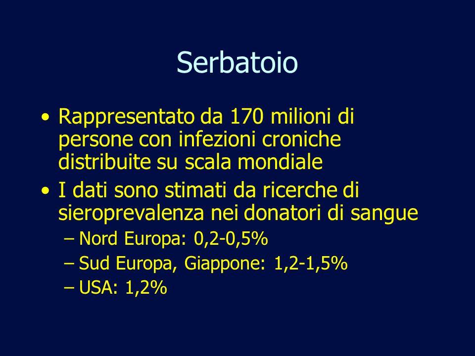 Serbatoio Rappresentato da 170 milioni di persone con infezioni croniche distribuite su scala mondiale I dati sono stimati da ricerche di sieroprevale