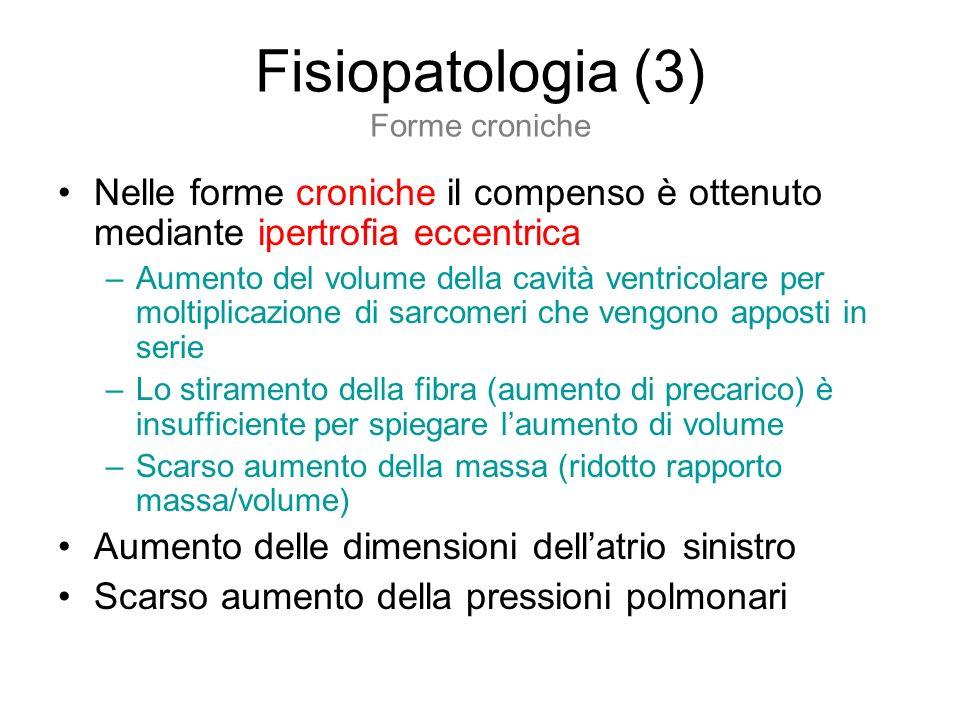 Fisiopatologia (3) Forme croniche Nelle forme croniche il compenso è ottenuto mediante ipertrofia eccentrica –Aumento del volume della cavità ventrico