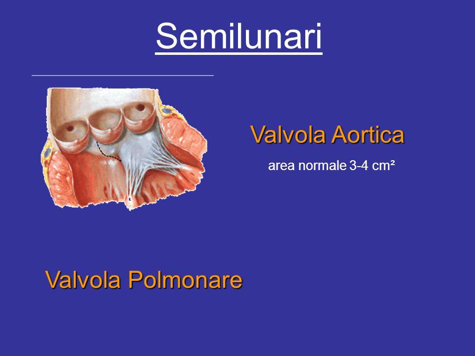 Semilunari Valvola Aortica Valvola Polmonare area normale 3-4 cm²