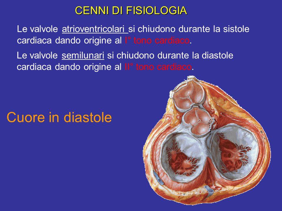 Le valvole atrioventricolari si chiudono durante la sistole cardiaca dando origine al I° tono cardiaco. Le valvole semilunari si chiudono durante la d