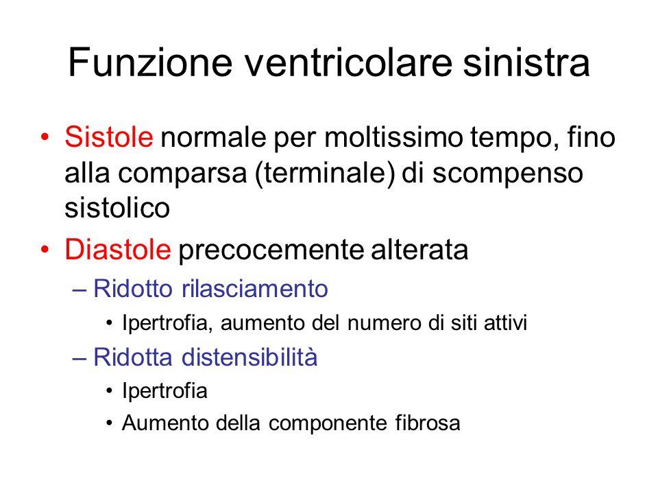 Funzione ventricolare sinistra Sistole normale per moltissimo tempo, fino alla comparsa (terminale) di scompenso sistolico Diastole precocemente alter