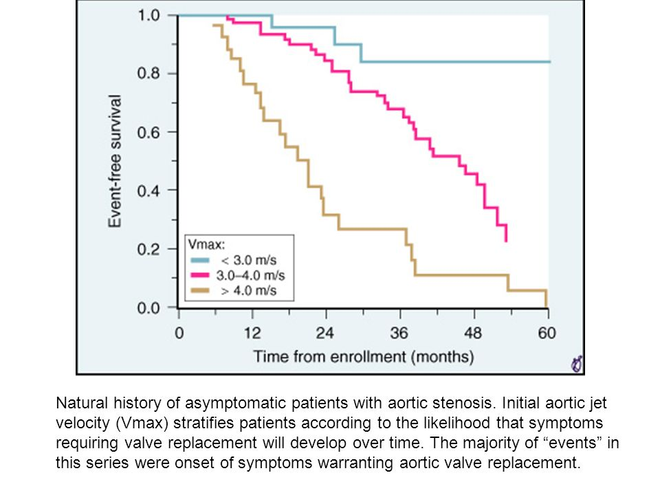 Natural history of asymptomatic patients with aortic stenosis. Initial aortic jet velocity (Vmax) stratifies patients according to the likelihood that