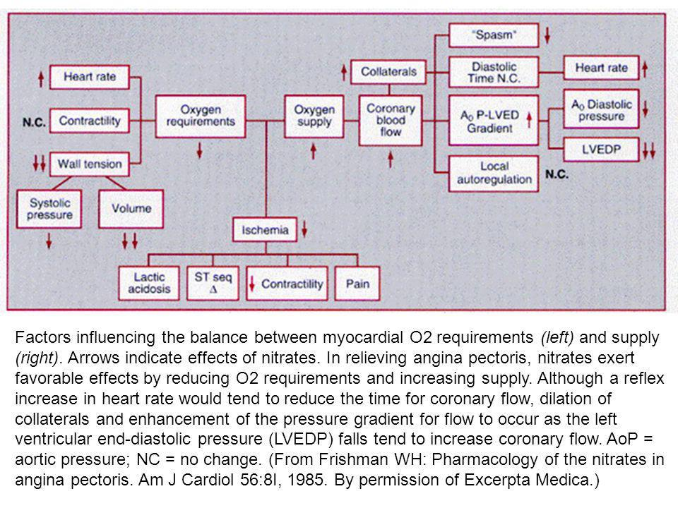 Factors influencing the balance between myocardial O2 requirements (left) and supply (right). Arrows indicate effects of nitrates. In relieving angina