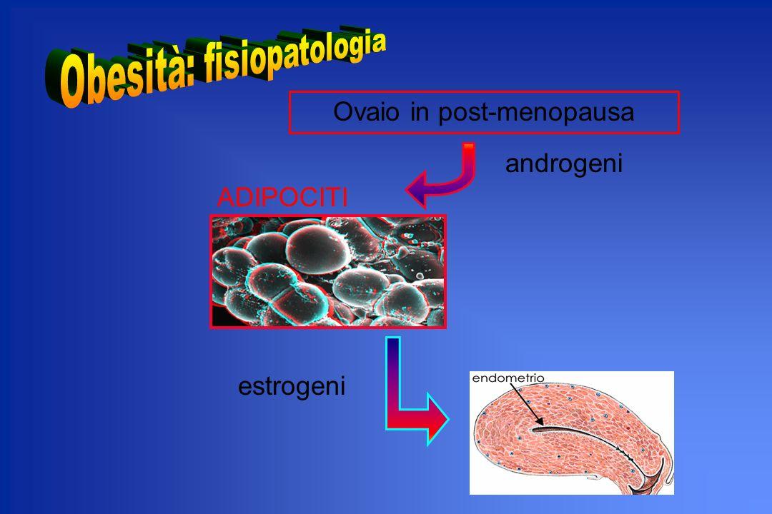 Ovaio in post-menopausa androgeni ADIPOCITI estrogeni