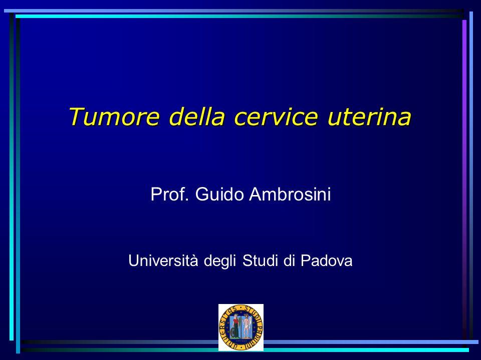 Tumore della cervice uterina Prof. Guido Ambrosini Università degli Studi di Padova