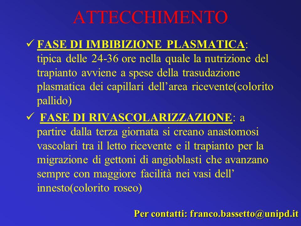 ATTECCHIMENTO FASE DI IMBIBIZIONE PLASMATICA: tipica delle 24-36 ore nella quale la nutrizione del trapianto avviene a spese della trasudazione plasma
