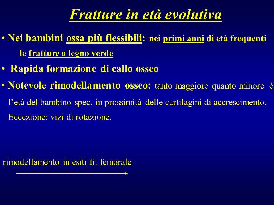Fratture in età evolutiva Nei bambini ossa più flessibili: nei primi anni di età frequenti le fratture a legno verde Rapida formazione di callo osseo