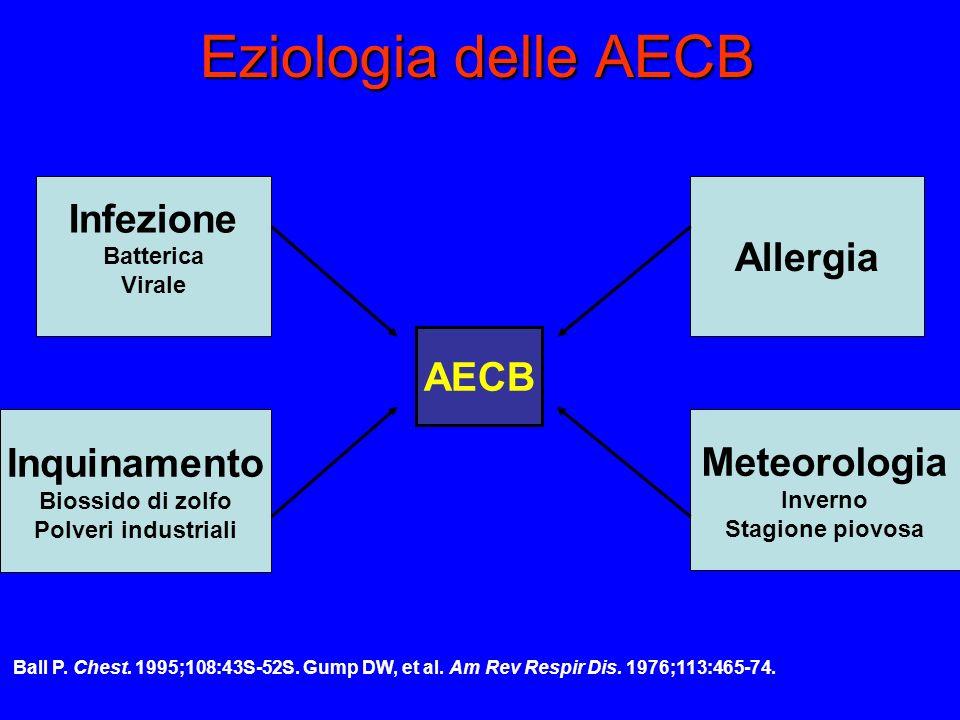 Eziologia delle AECB Infezione Batterica Virale Allergia Inquinamento Biossido di zolfo Polveri industriali Meteorologia Inverno Stagione piovosa AECB Ball P.