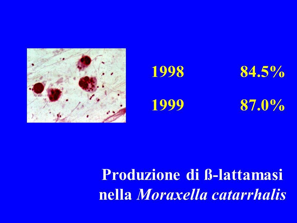 199884.5% 199987.0% Produzione di ß-lattamasi nella Moraxella catarrhalis