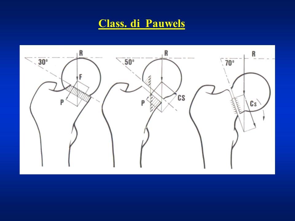 Class. di Garden III IIIIV III IIIIV