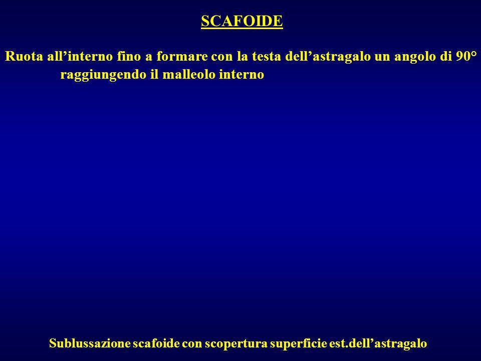 SCAFOIDE Ruota allinterno fino a formare con la testa dellastragalo un angolo di 90° raggiungendo il malleolo interno Sublussazione scafoide con scope
