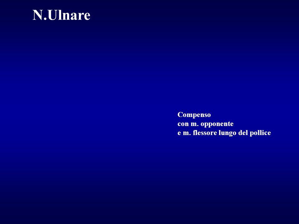 Compenso con m. opponente e m. flessore lungo del pollice N.Ulnare