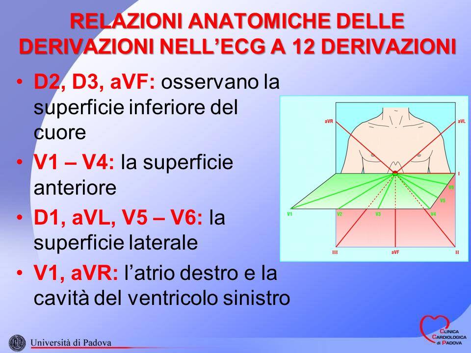RELAZIONI ANATOMICHE DELLE DERIVAZIONI NELLECG A 12 DERIVAZIONI D2, D3, aVF: osservano la superficie inferiore del cuore V1 – V4: la superficie anteriore D1, aVL, V5 – V6: la superficie laterale V1, aVR: latrio destro e la cavità del ventricolo sinistro