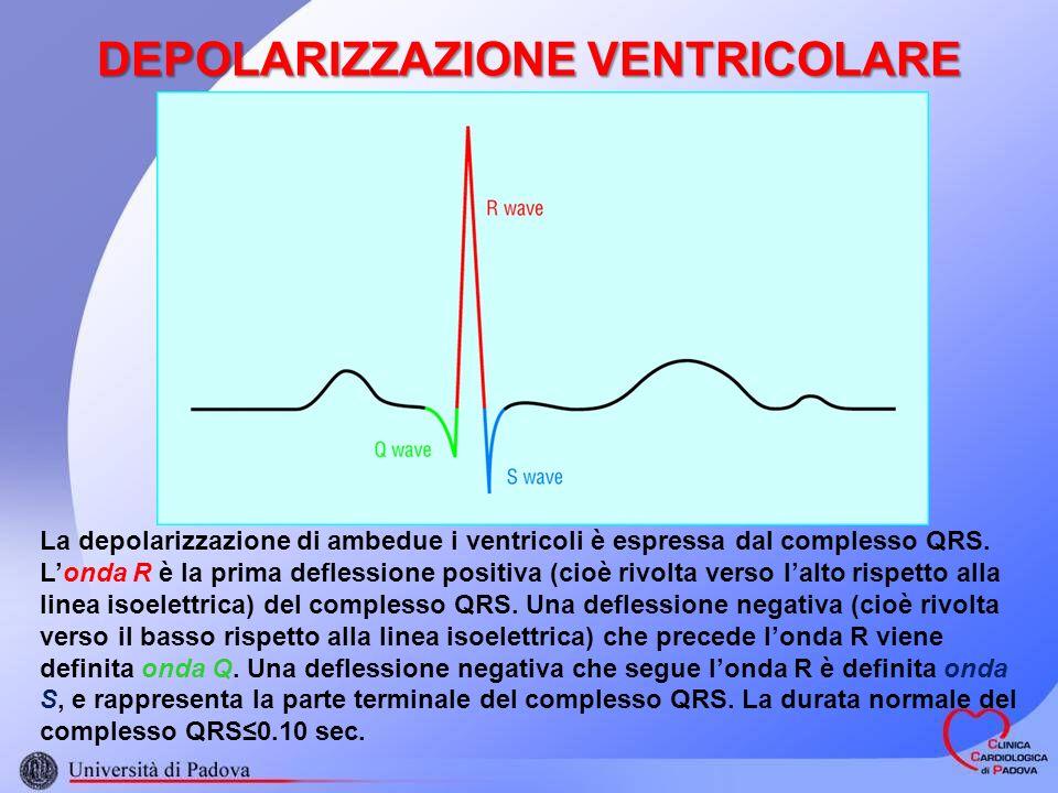 DEPOLARIZZAZIONE VENTRICOLARE La depolarizzazione di ambedue i ventricoli è espressa dal complesso QRS. Londa R è la prima deflessione positiva (cioè