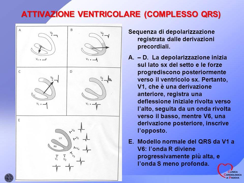 ATTIVAZIONE VENTRICOLARE (COMPLESSO QRS) Sequenza di depolarizzazione registrata dalle derivazioni precordiali. A.– D. La depolarizzazione inizia sul