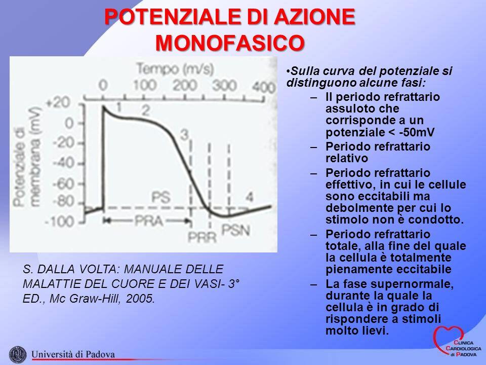 POTENZIALE DI AZIONE MONOFASICO Sulla curva del potenziale si distinguono alcune fasi: –Il periodo refrattario assuloto che corrisponde a un potenziale < -50mV –Periodo refrattario relativo –Periodo refrattario effettivo, in cui le cellule sono eccitabili ma debolmente per cui lo stimolo non è condotto.