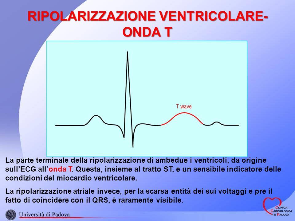 RIPOLARIZZAZIONE VENTRICOLARE- ONDA T La parte terminale della ripolarizzazione di ambedue i ventricoli, da origine sullECG allonda T. Questa, insieme