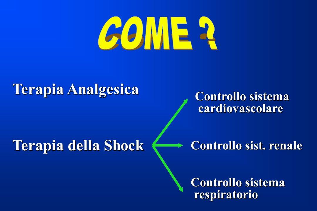 Terapia Analgesica Terapia della Shock Controllo sistema cardiovascolare cardiovascolare Controllo sist. renale Controllo sistema respiratorio respira