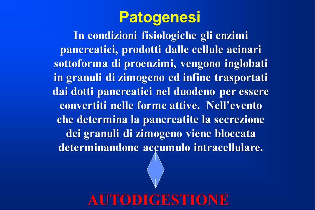 Patogenesi In condizioni fisiologiche gli enzimi pancreatici, prodotti dalle cellule acinari sottoforma di proenzimi, vengono inglobati in granuli di