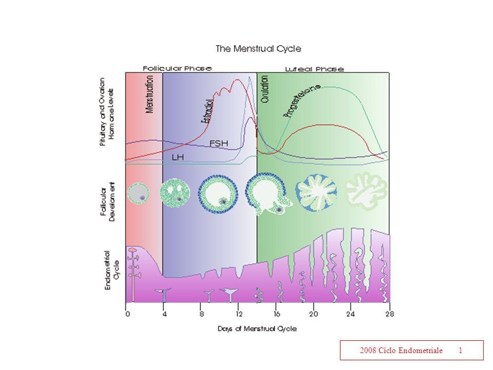 2008 Ciclo Endometriale1