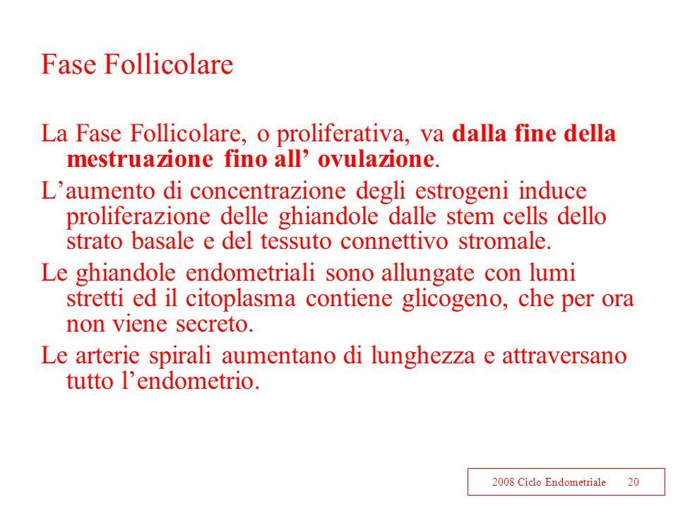 2008 Ciclo Endometriale20 Fase Follicolare La Fase Follicolare, o proliferativa, va dalla fine della mestruazione fino all ovulazione. Laumento di con