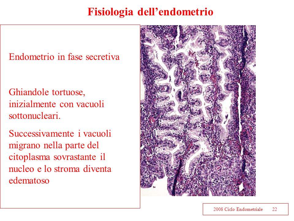 2008 Ciclo Endometriale22 Fisiologia dellendometrio Endometrio in fase secretiva Ghiandole tortuose, inizialmente con vacuoli sottonucleari. Successiv