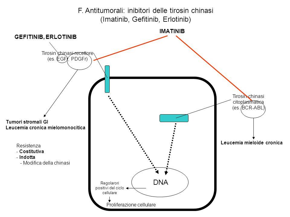 DNA Tirosin chinasi-recettore (es. EGFr, PDGFr) Tirosin chinasi citoplasmatica (es. BCR-ABL) IMATINIB Leucemia mieloide cronica Tumori stromali GI Leu