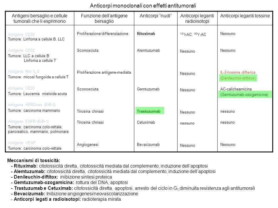 Antigeni bersaglio e cellule tumorali che li esprimono Funzione dellantigene bersaglio Anticorpi nudiAnticorpi leganti radioisotopi Anticorpi leganti