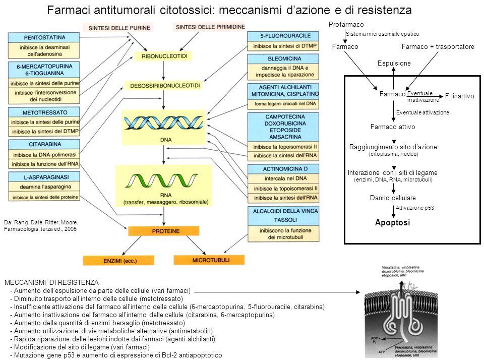 MECCANISMI DI RESISTENZA - Aumento dellespulsione da parte delle cellule (vari farmaci) - Diminuito trasporto allinterno delle cellule (metotressato)
