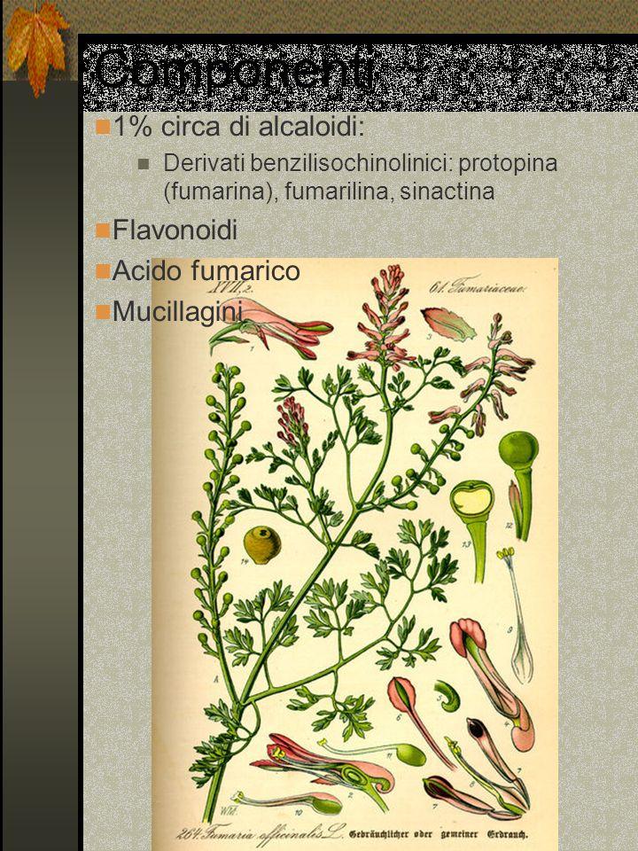 Componenti 1% circa di alcaloidi: Derivati benzilisochinolinici: protopina (fumarina), fumarilina, sinactina Flavonoidi Acido fumarico Mucillagini
