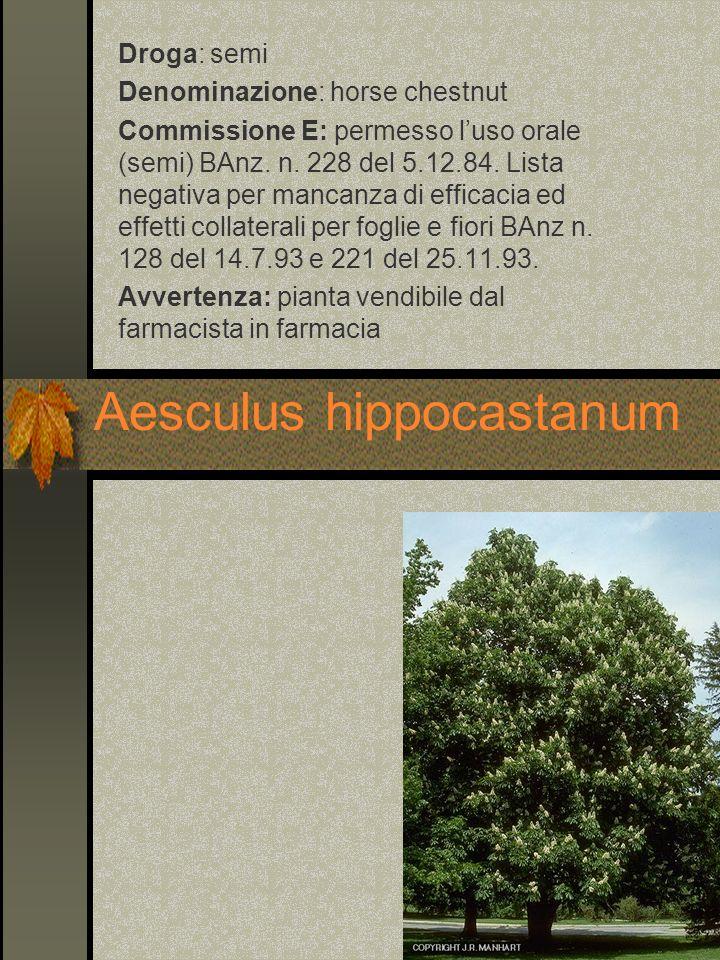 Aesculus hippocastanum Droga: semi Denominazione: horse chestnut Commissione E: permesso luso orale (semi) BAnz. n. 228 del 5.12.84. Lista negativa pe