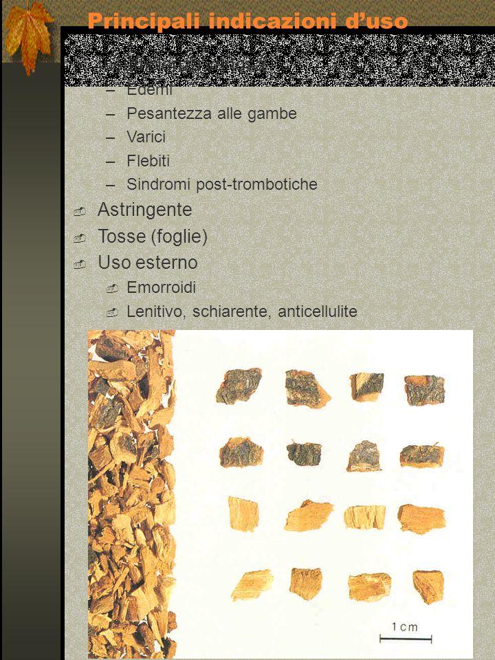 Insufficienza venosa –Edemi –Pesantezza alle gambe –Varici –Flebiti –Sindromi post-trombotiche Astringente Tosse (foglie) Uso esterno Emorroidi Leniti