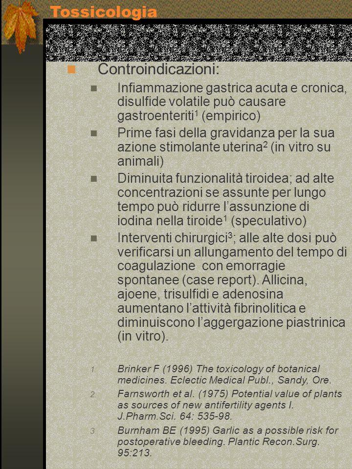 Controindicazioni: Infiammazione gastrica acuta e cronica, disulfide volatile può causare gastroenteriti 1 (empirico) Prime fasi della gravidanza per