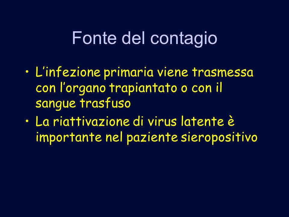 Fonte del contagio Linfezione primaria viene trasmessa con lorgano trapiantato o con il sangue trasfuso La riattivazione di virus latente è importante nel paziente sieropositivo