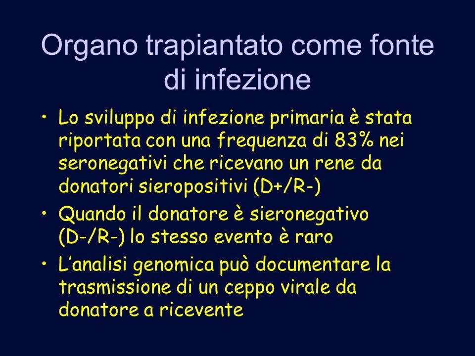 Organo trapiantato come fonte di infezione Lo sviluppo di infezione primaria è stata riportata con una frequenza di 83% nei seronegativi che ricevano un rene da donatori sieropositivi (D+/R-) Quando il donatore è sieronegativo (D-/R-) lo stesso evento è raro Lanalisi genomica può documentare la trasmissione di un ceppo virale da donatore a ricevente