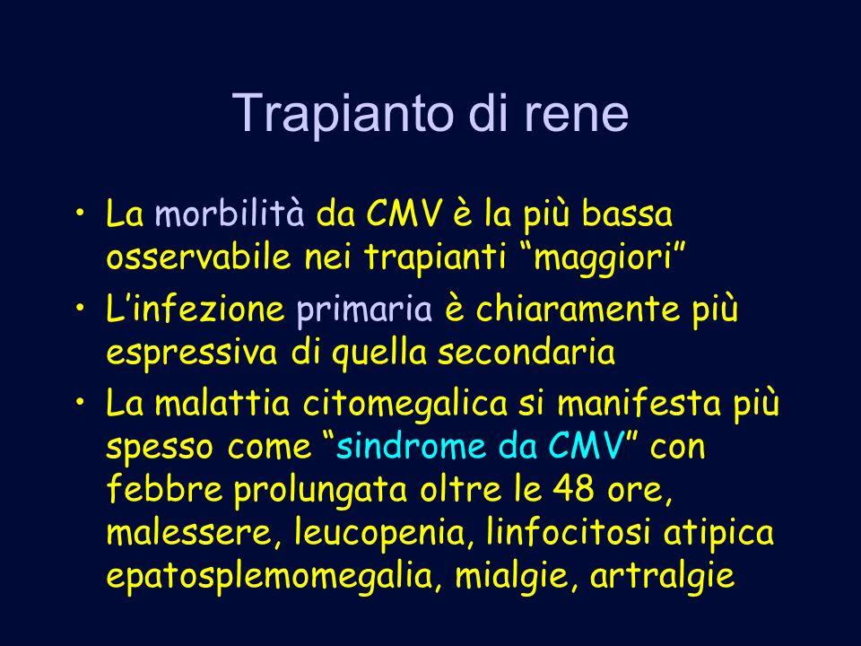 Trapianto di rene La morbilità da CMV è la più bassa osservabile nei trapianti maggiori Linfezione primaria è chiaramente più espressiva di quella secondaria La malattia citomegalica si manifesta più spesso come sindrome da CMV con febbre prolungata oltre le 48 ore, malessere, leucopenia, linfocitosi atipica epatosplemomegalia, mialgie, artralgie