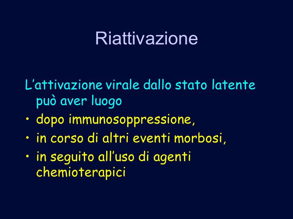 Riattivazione Lattivazione virale dallo stato latente può aver luogo dopo immunosoppressione, in corso di altri eventi morbosi, in seguito alluso di agenti chemioterapici