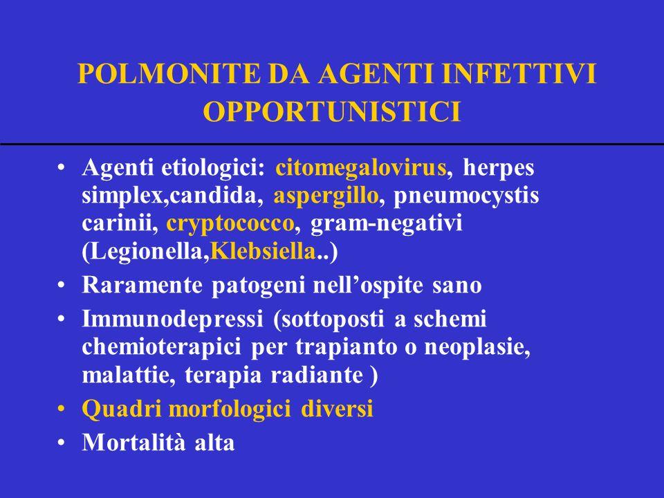 POLMONITE DA AGENTI INFETTIVI OPPORTUNISTICI Agenti etiologici: citomegalovirus, herpes simplex,candida, aspergillo, pneumocystis carinii, cryptococco, gram-negativi (Legionella,Klebsiella..) Raramente patogeni nellospite sano Immunodepressi (sottoposti a schemi chemioterapici per trapianto o neoplasie, malattie, terapia radiante ) Quadri morfologici diversi Mortalità alta