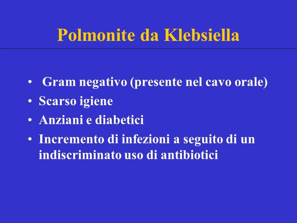 Polmonite da Klebsiella Gram negativo (presente nel cavo orale) Scarso igiene Anziani e diabetici Incremento di infezioni a seguito di un indiscriminato uso di antibiotici