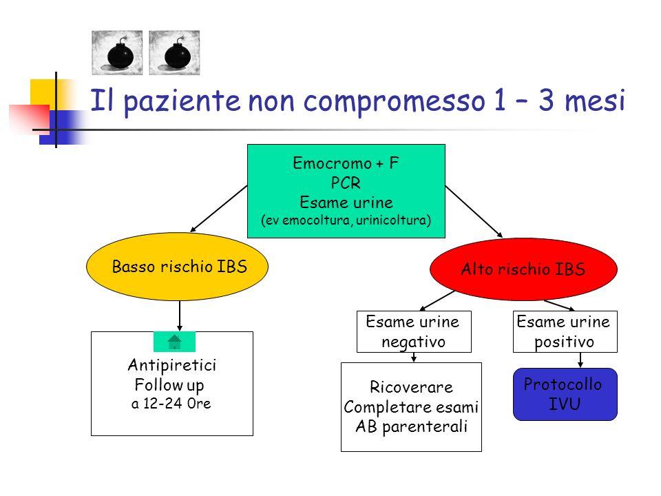 Il paziente non compromesso 1 – 3 mesi Emocromo + F PCR Esame urine (ev emocoltura, urinicoltura) Alto rischio IBS Basso rischio IBS Antipiretici Foll