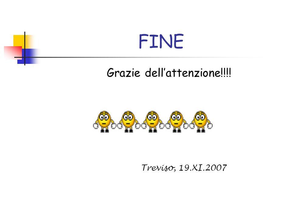 FINE Grazie dellattenzione!!!! Treviso, 19.XI.2007