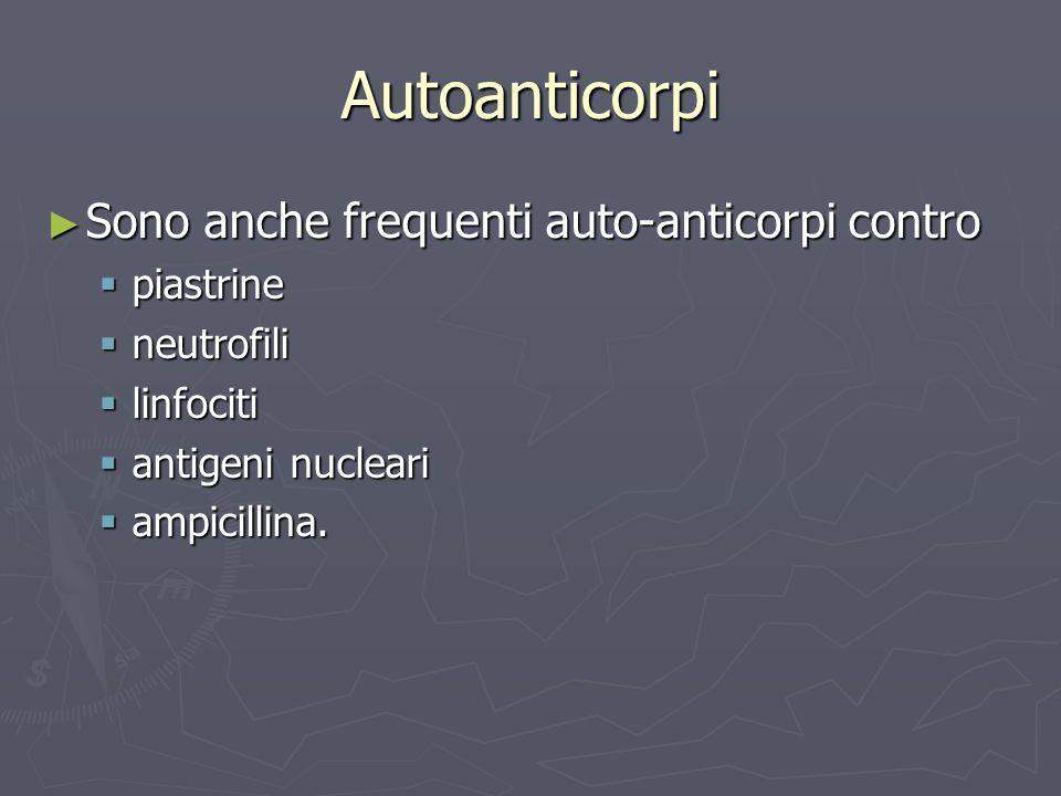 Autoanticorpi Sono anche frequenti auto-anticorpi contro Sono anche frequenti auto-anticorpi contro piastrine piastrine neutrofili neutrofili linfocit