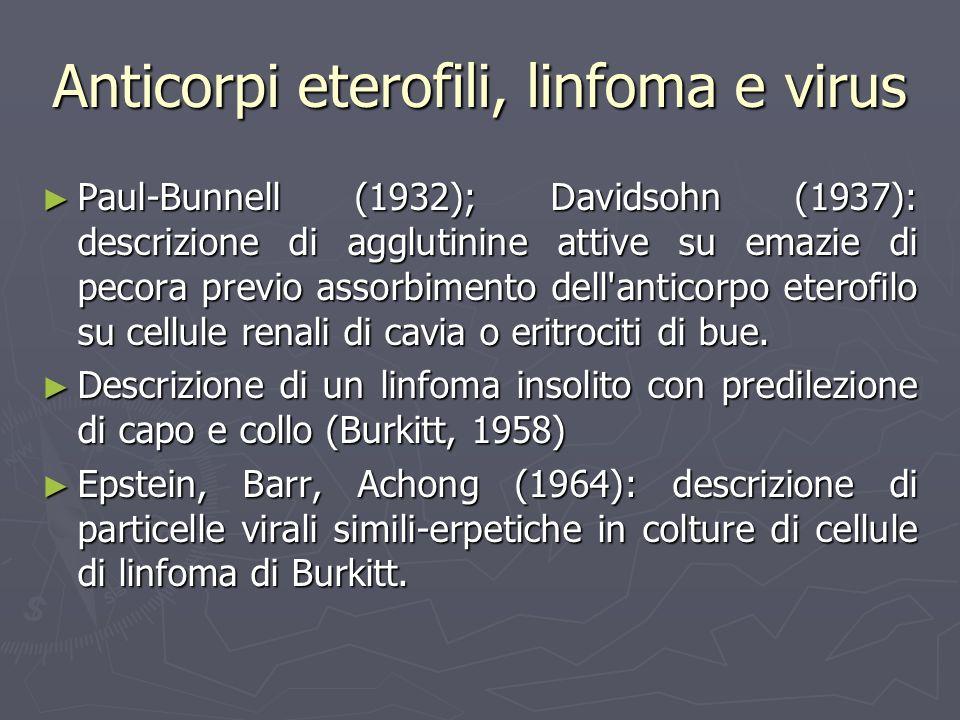 Anticorpi eterofili, linfoma e virus Paul-Bunnell (1932); Davidsohn (1937): descrizione di agglutinine attive su emazie di pecora previo assorbimento