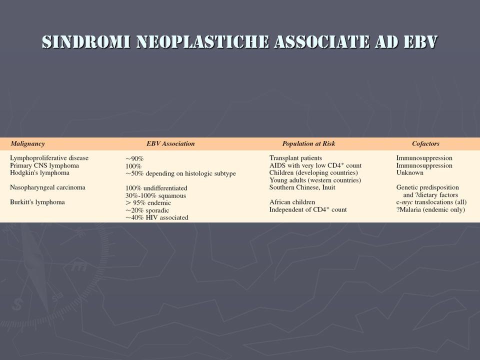 Sindromi neoplastiche associate ad EBV